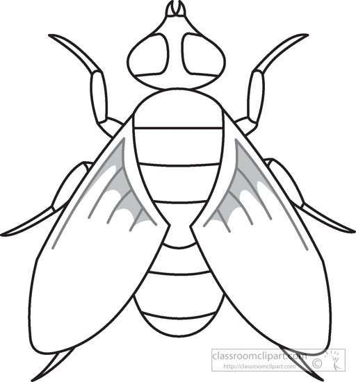 Black And White Fly Clipart.