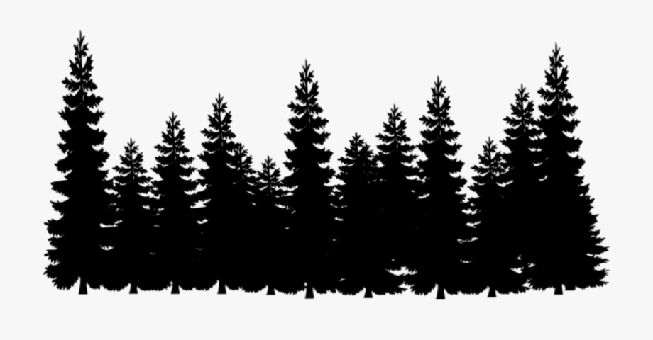 Black And White Forest Clipart , Png Download.