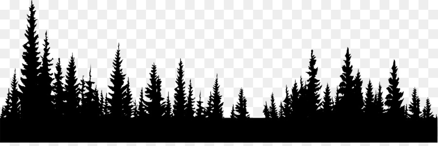 Black And White Forest Png & Free Black And White Forest.png.