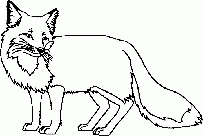 Arctic Fox Clipart Black And White.
