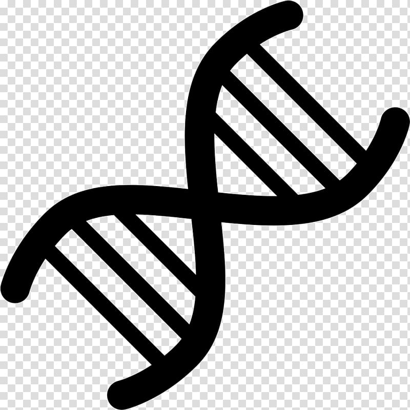 Genetics DNA Computer Icons , transparent background PNG.