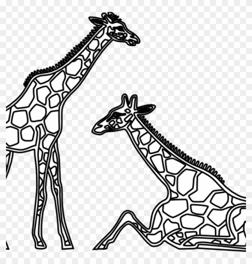 Giraffe Clipart Black And White Giraffe Clipart Black.