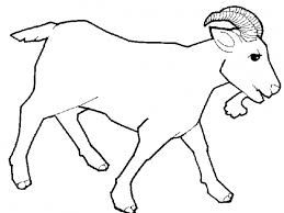 Image result for goat clip art black and white.