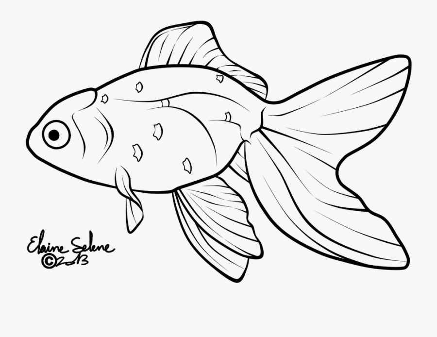 Goldfish Lineart Black And White.