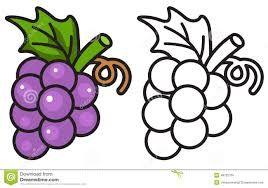 Image result for grape clip art black and white.