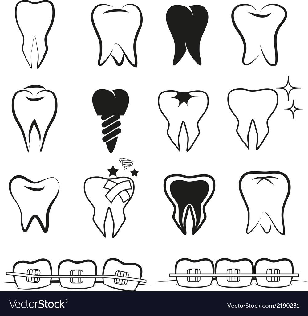 Set of teeth on white black ground.