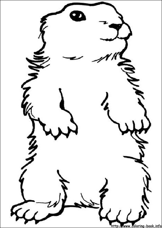 Black and white groundhog clipart kid 4.