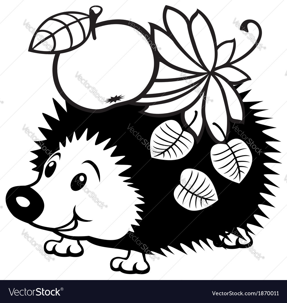 Cartoon hedgehog black white.