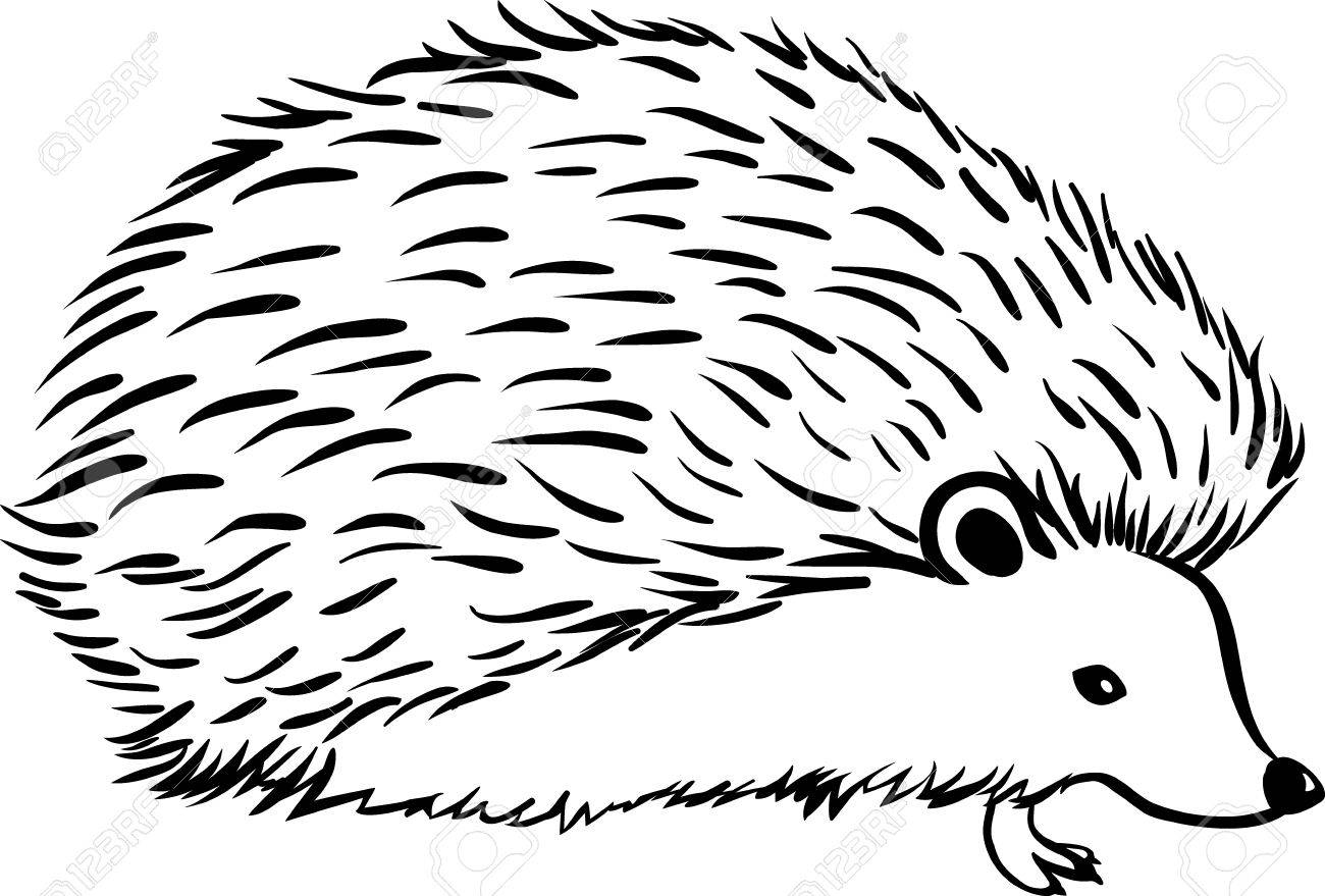 1451 Hedgehog free clipart.