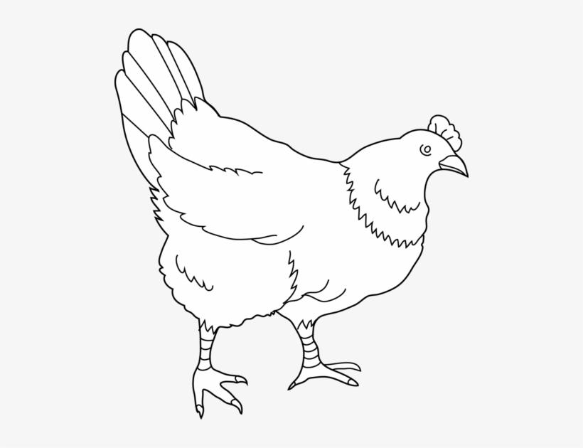 Cute Hen Clipart Free Clipart Image Image.