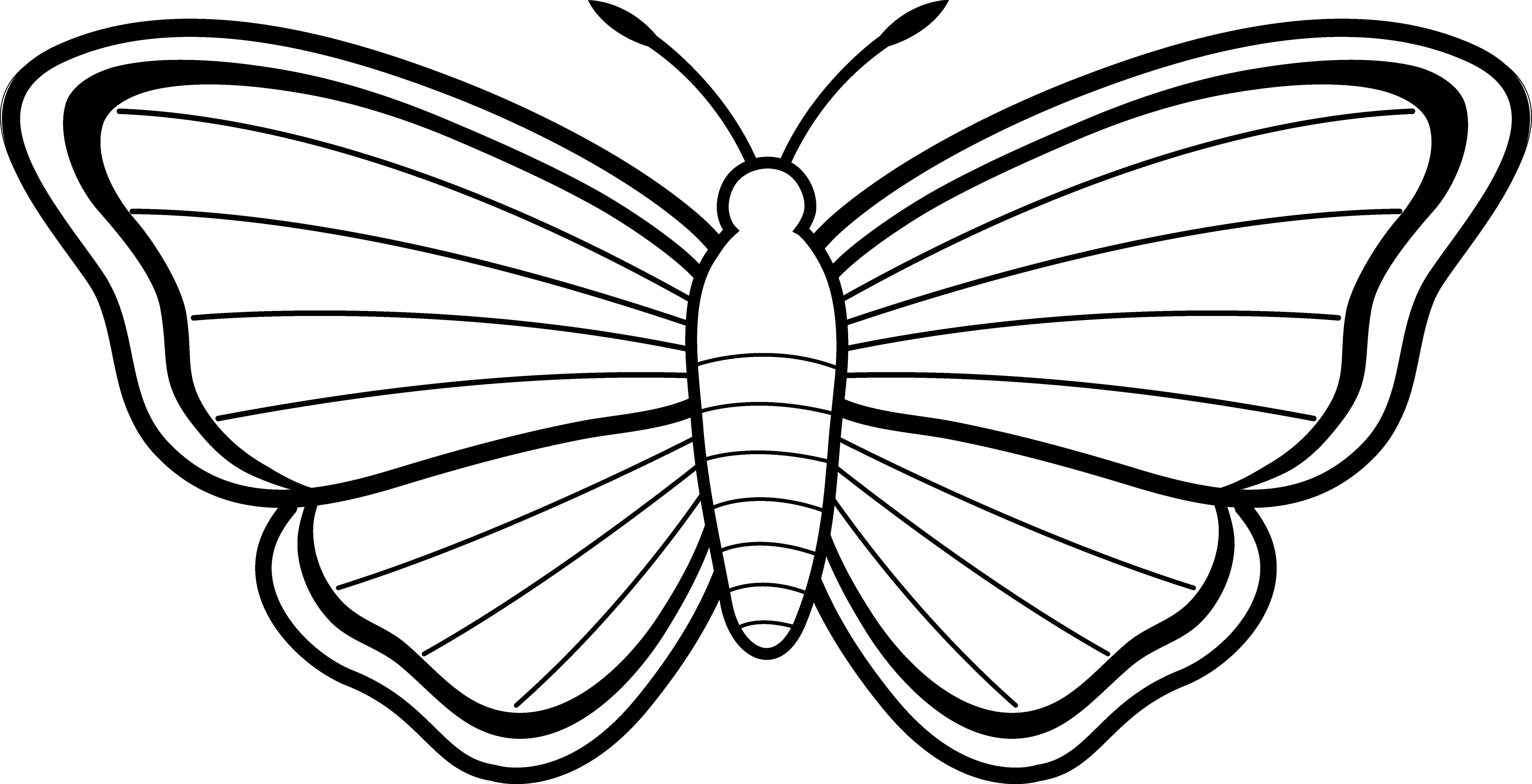 Black And White Butterfly Profile Clipart.