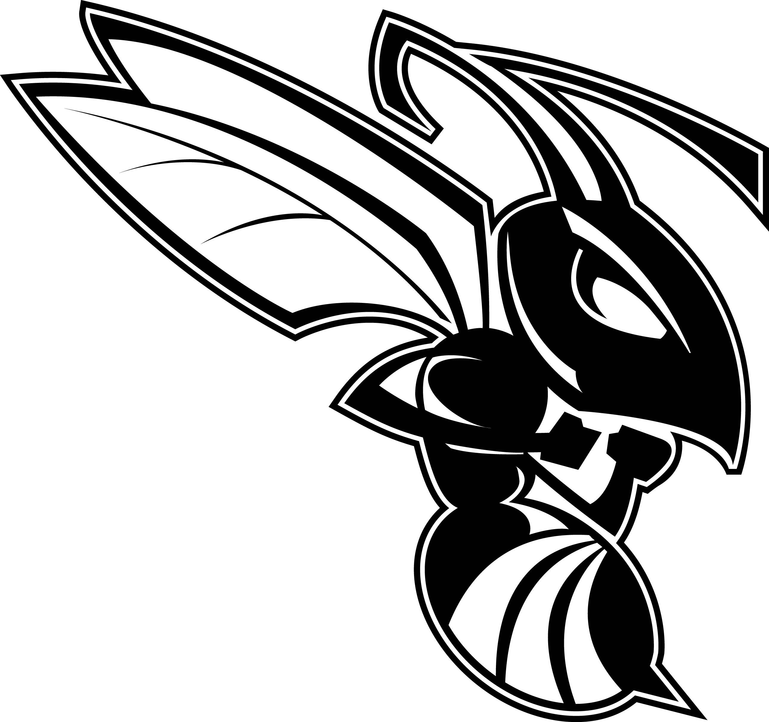 Black white hornet pictures Unique Hornet Black and White.