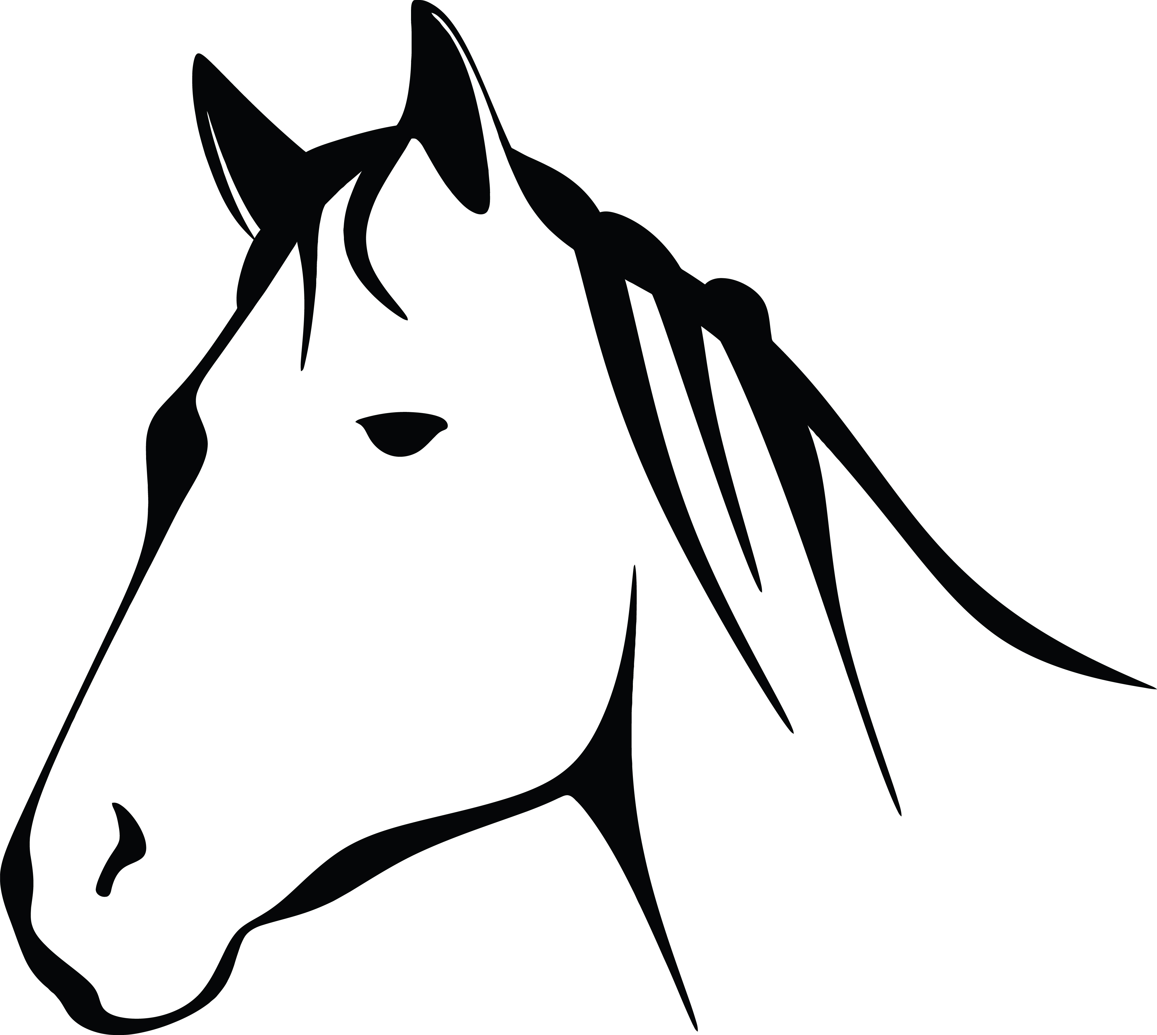 Free Clipart Of A black and white horse head.