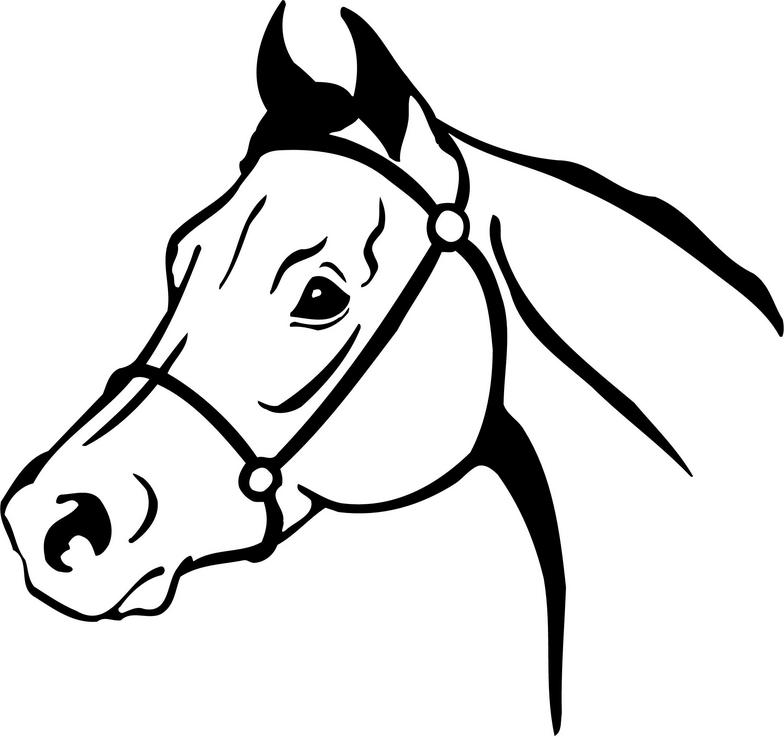 Free Horse Head Clipart Black And White, Download Free Clip.