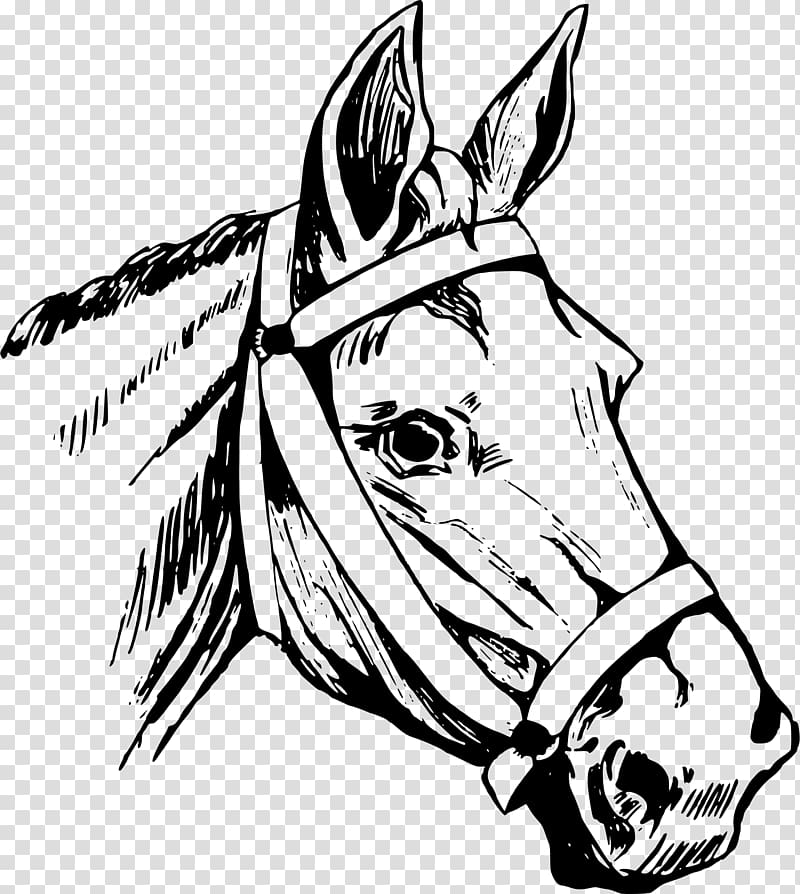 Horse head mask American Quarter Horse , horse riding.
