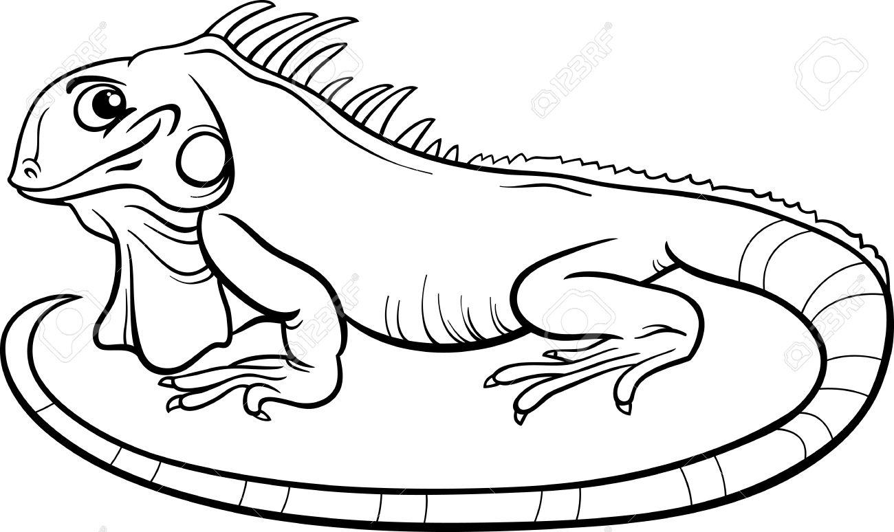 Best Iguana Clipart #14000.