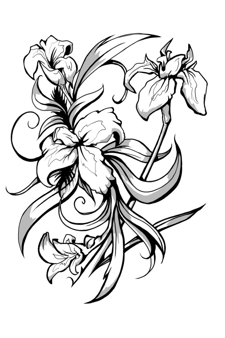 Black And White Iris Flower Tattoo Designs.