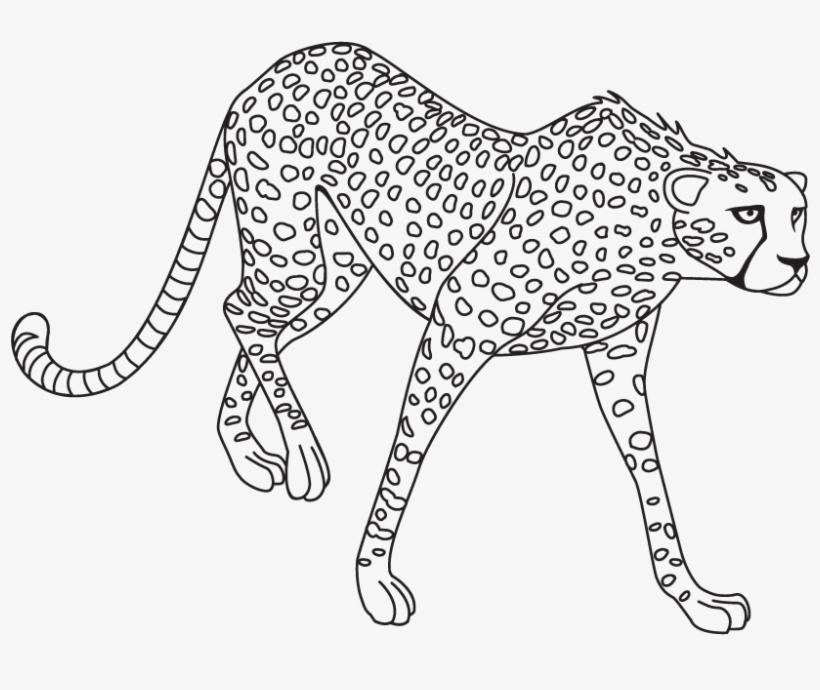 Jaguar Png Clipart.