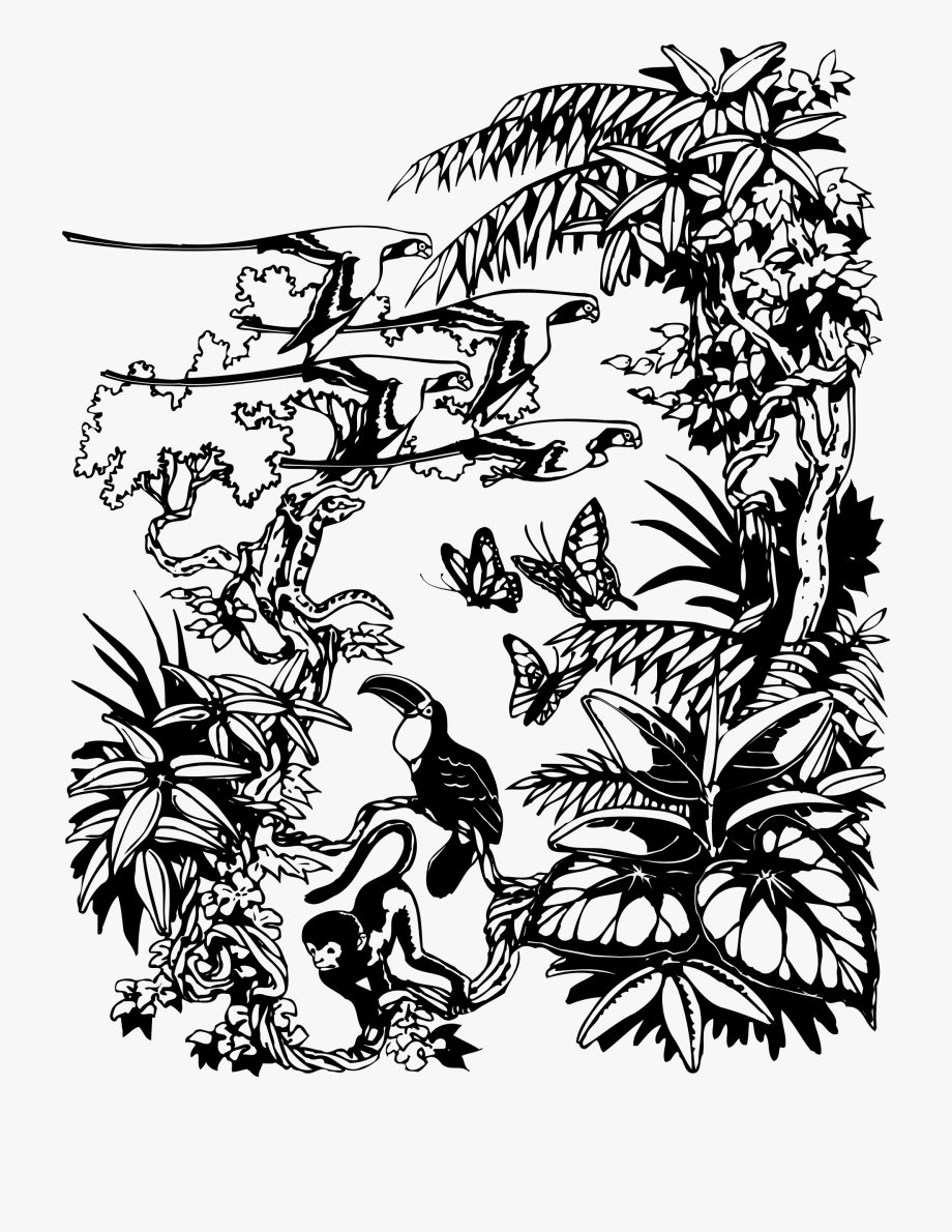 Jungle Clipart Black And White.
