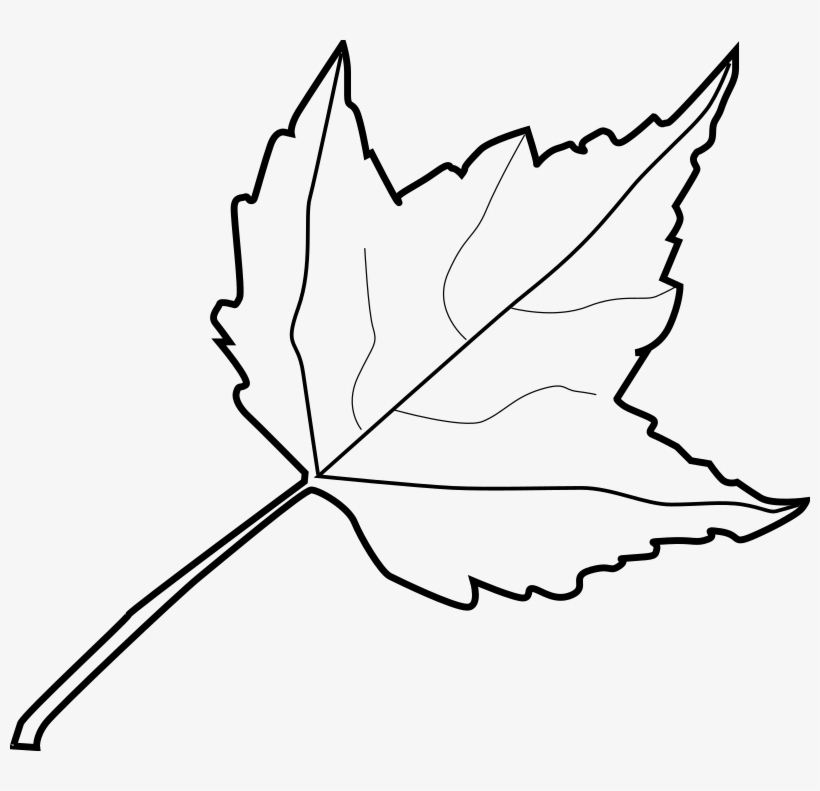 Leaf Outline Tree Outline With Leaves Clipart.