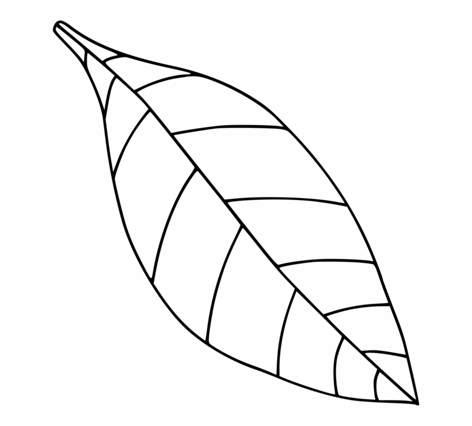 Computer Icons Drawing Black And White Leaf Coloring.