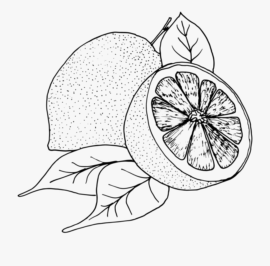 Lemon Black And White Clipart.