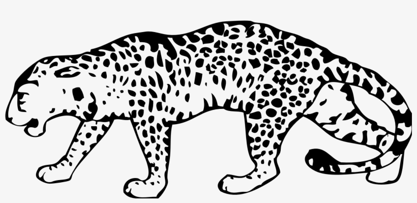 Vector Transparent Stock Leopard Png Black And White.