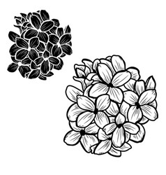 Lilac Clipart Vector Images (over 120).