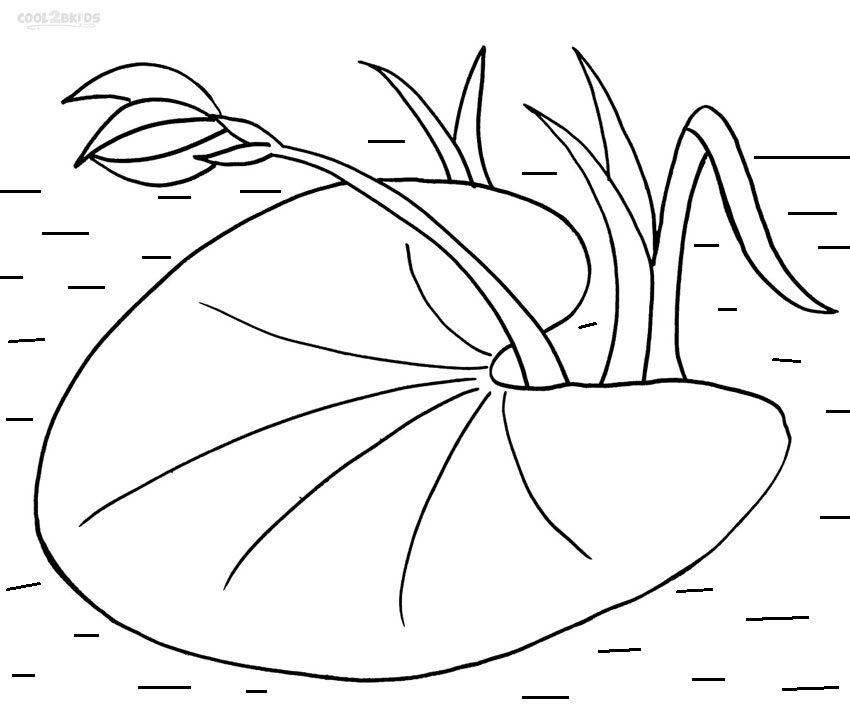 Free Lily Pad Black And White, Download Free Clip Art, Free.