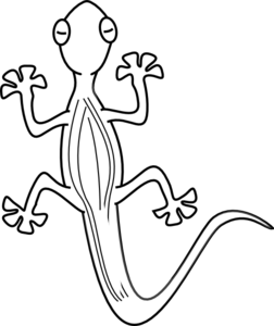 Free Lizard Outline Cliparts, Download Free Clip Art, Free.