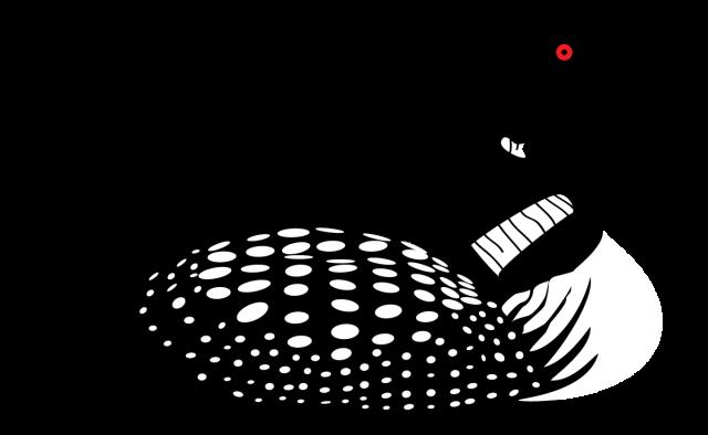 Pin by Sallie Barker on birds.