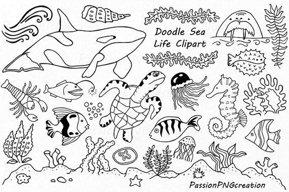 Doodle Marine Life Clipart, Sea Life clip art, Ocean life.