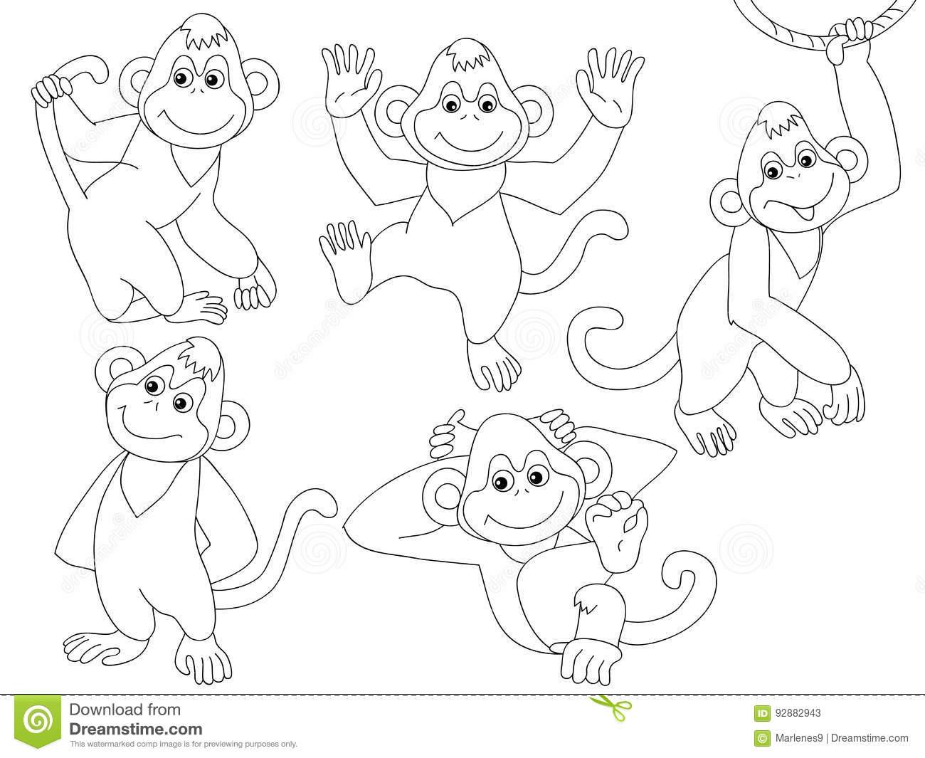 Vector Monkeys Set stock vector. Illustration of character.