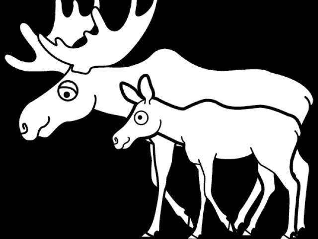Moose Clipart Transparent Background.