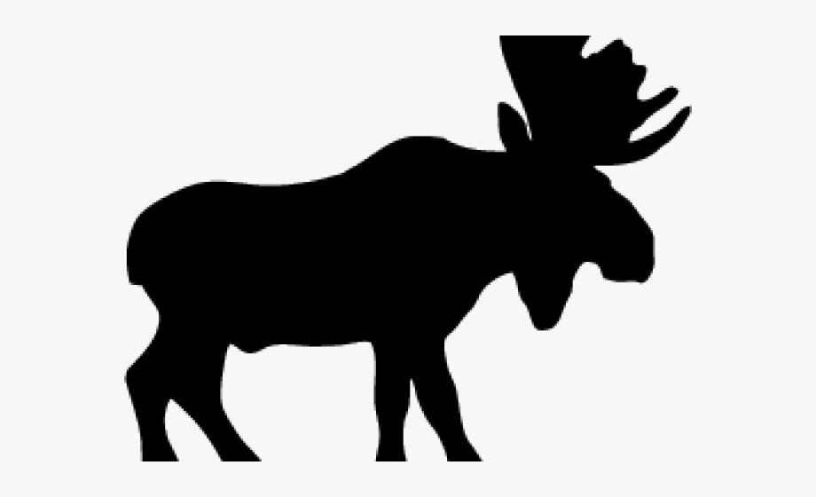Moose Clipart Easy Cartoon.