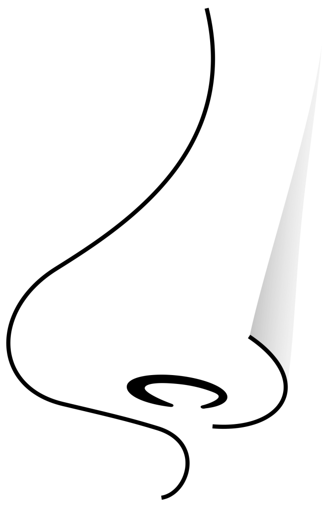 Free Nose Clipart Black And White, Download Free Clip Art.