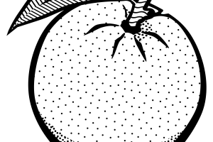 Black and white oobleck clipart Transparent pictures on F.