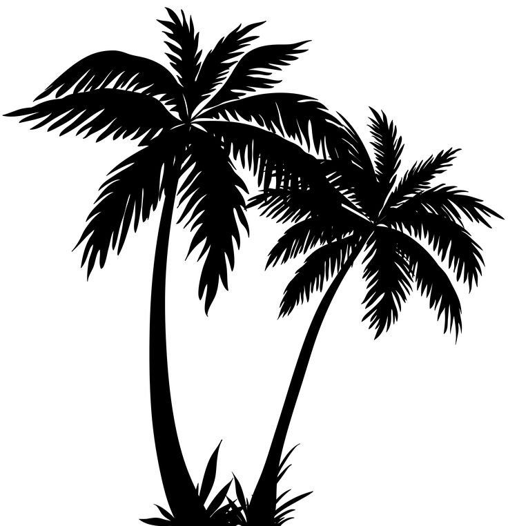 Silhouette Images Of Palm Trees.
