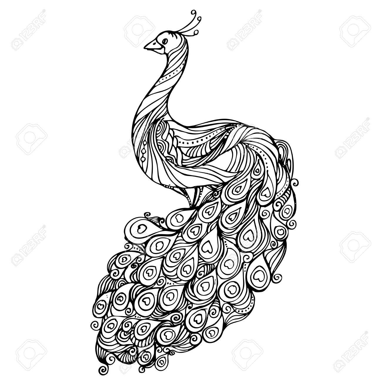 Vintage pattern black and white doodle peacock. design. Sketch.