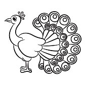 Peacock Clipart Black And White & Free Clip Art Images #17763.