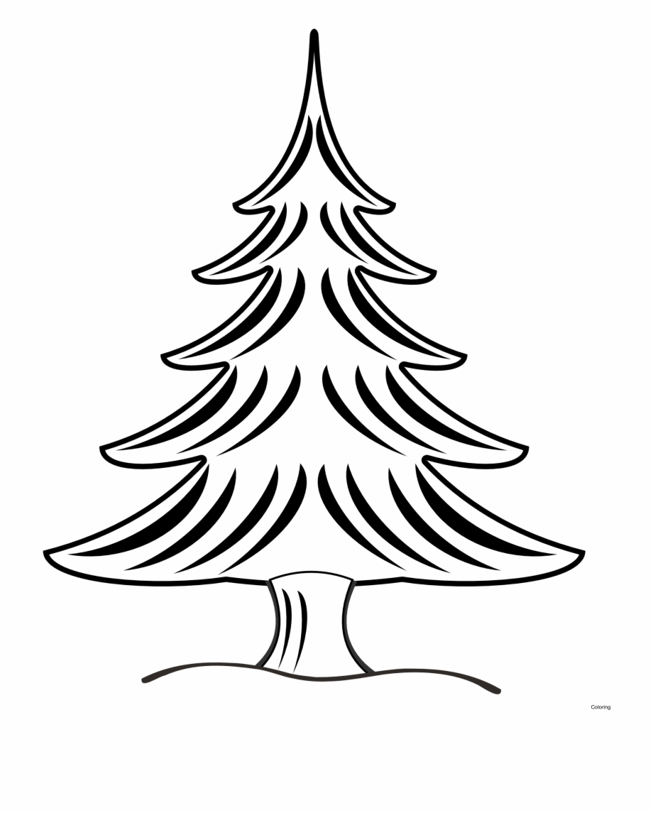 Pine Tree Clipart Transparent Tumblr.