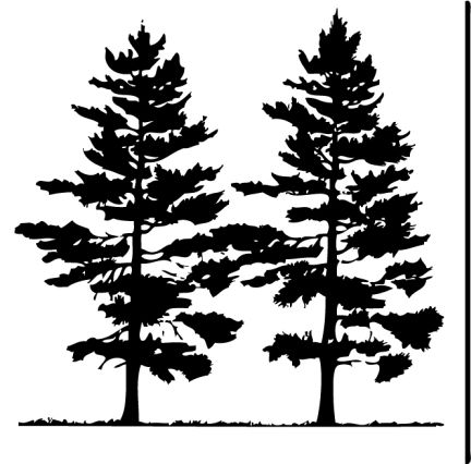 Free Pine Tree Clip Art Pictures.