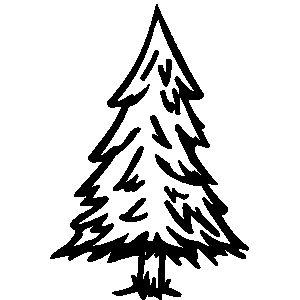 Pine Tree Black And White.