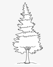 Black And White Pine Tree Png Vector, Clipart, Psd.