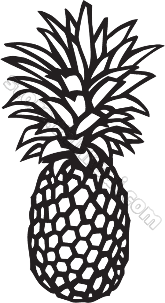 Pineapple clipart black and white free clipart 4.