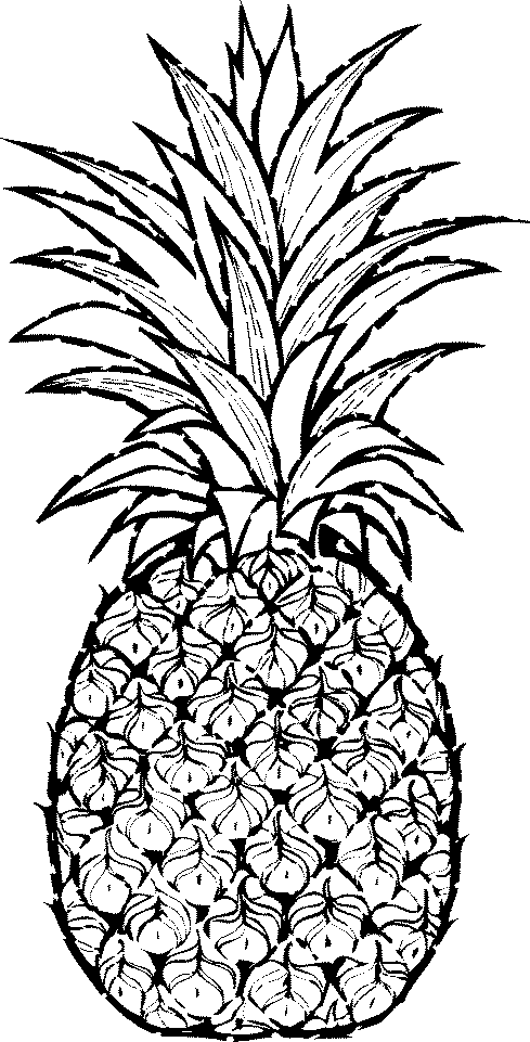 Pineapple clip art fruit clip art downloadclipart org.