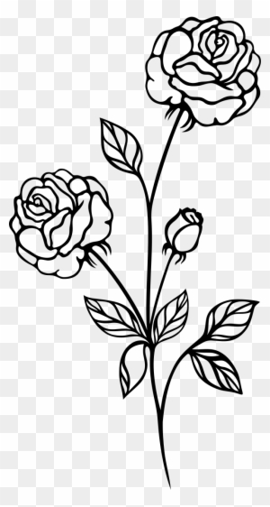 Rose Plant Clipart Black And White.