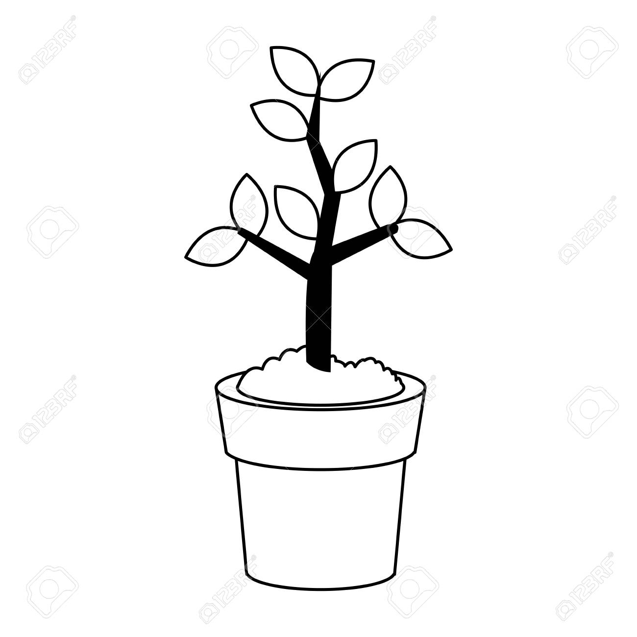 Plant growing on pot on black and white colors vector illustration.