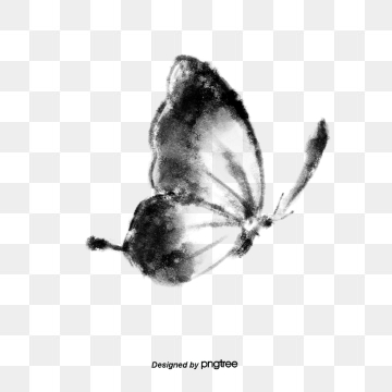 Black And White Butterfly PNG Images.