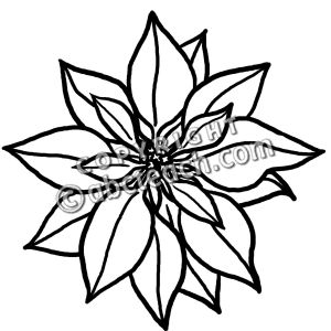 Poinsettia clipart black and white 2 » Clipart Station.